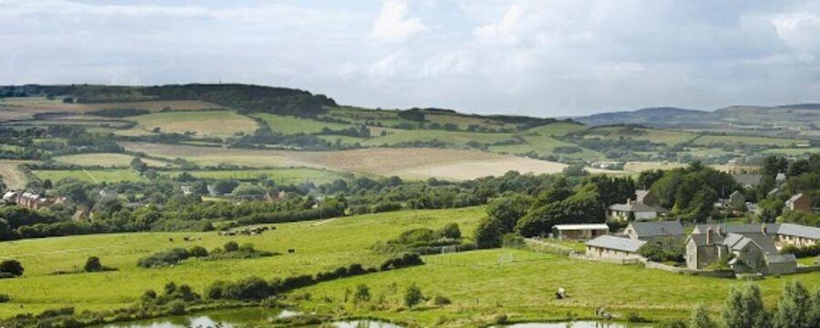 Nettlcombe Farm's late availability