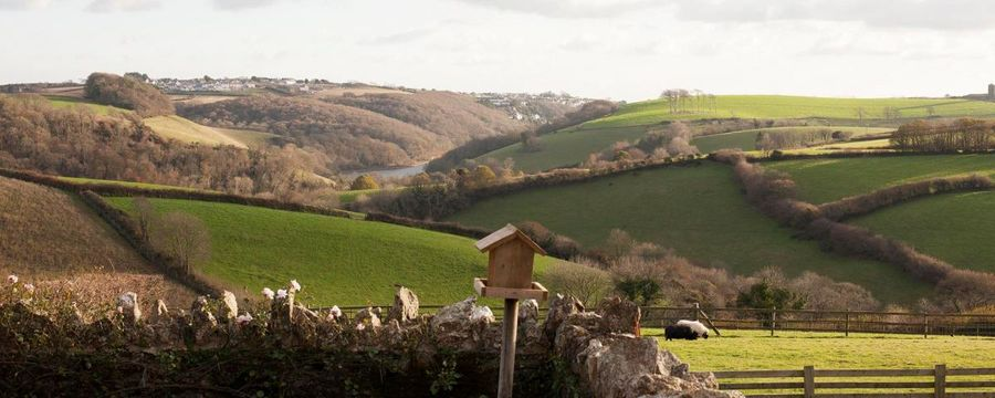 Family friendly farmstead near Looe in Cornwall