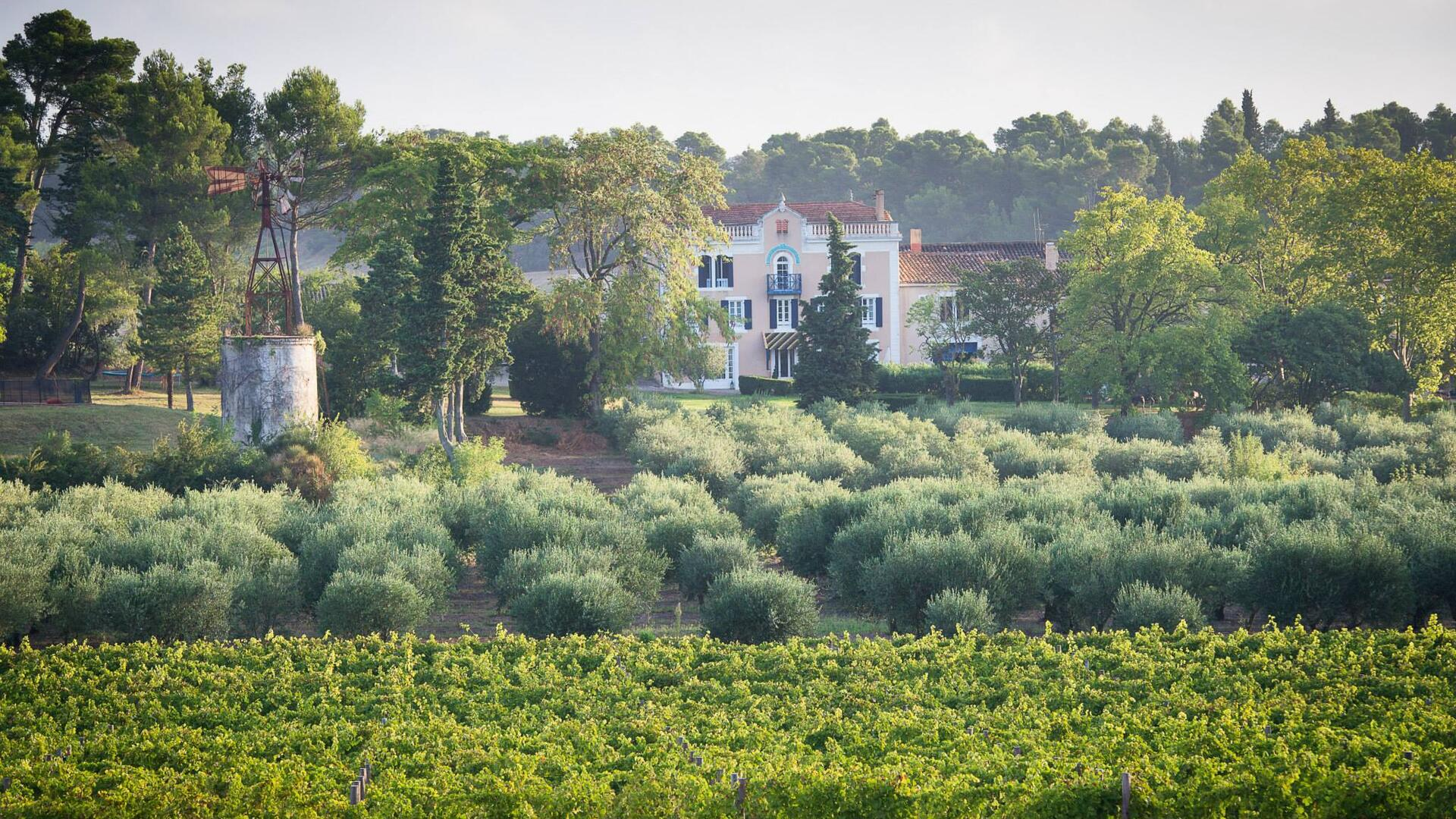 Chateau Canet, family-friendly holiday cottages in the Languedoc