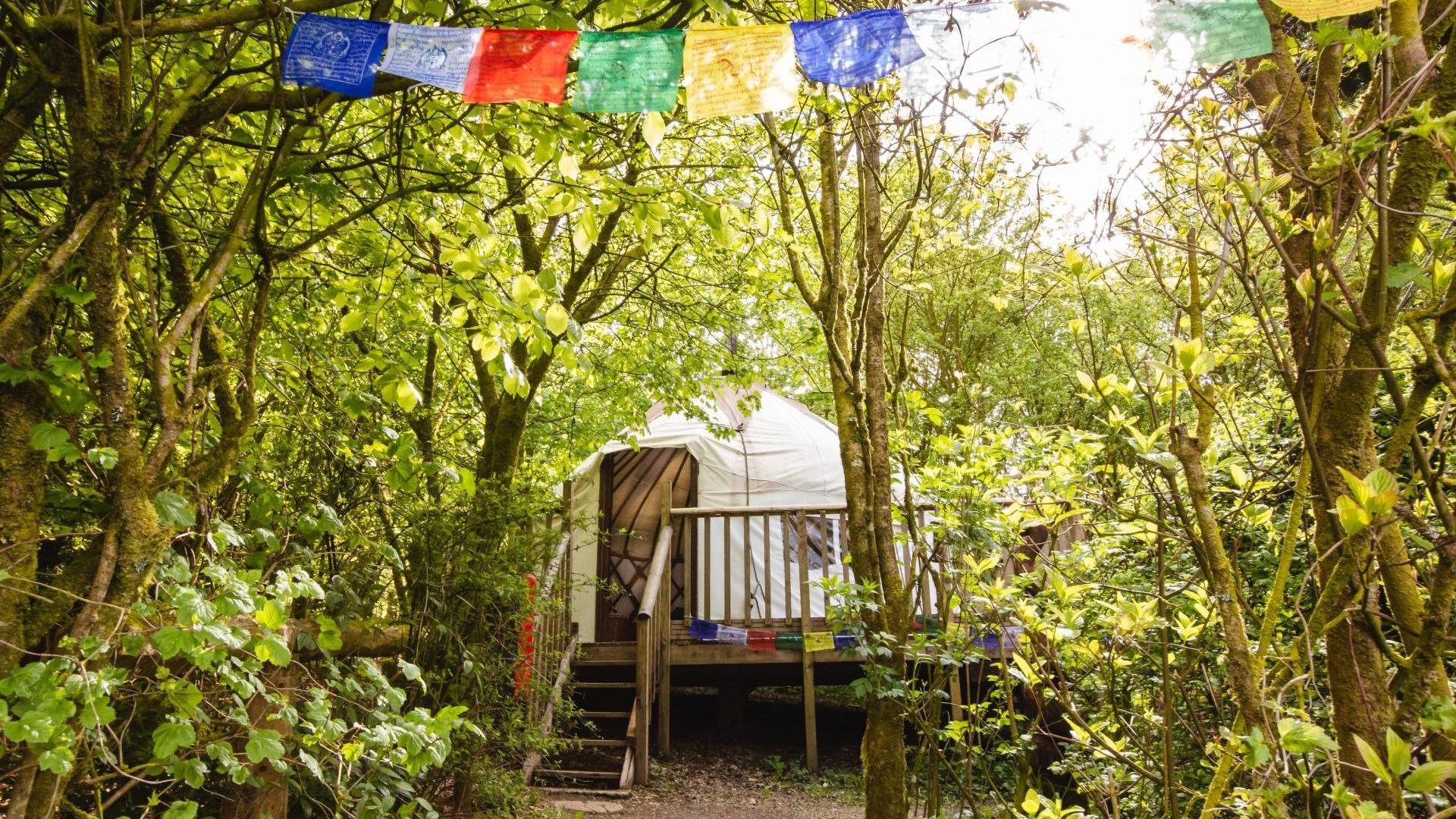 1 Bedroom Yurt in Wales, United Kingdom
