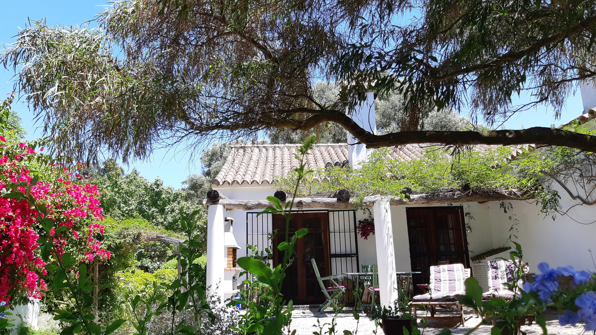 child-friendly holiday villa, wheelchair friendly in Andalucia, Spain