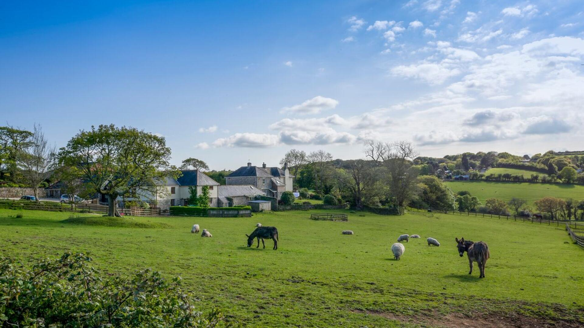 13 Bedroom Cottage/shared grounds in Cornwall, United Kingdom